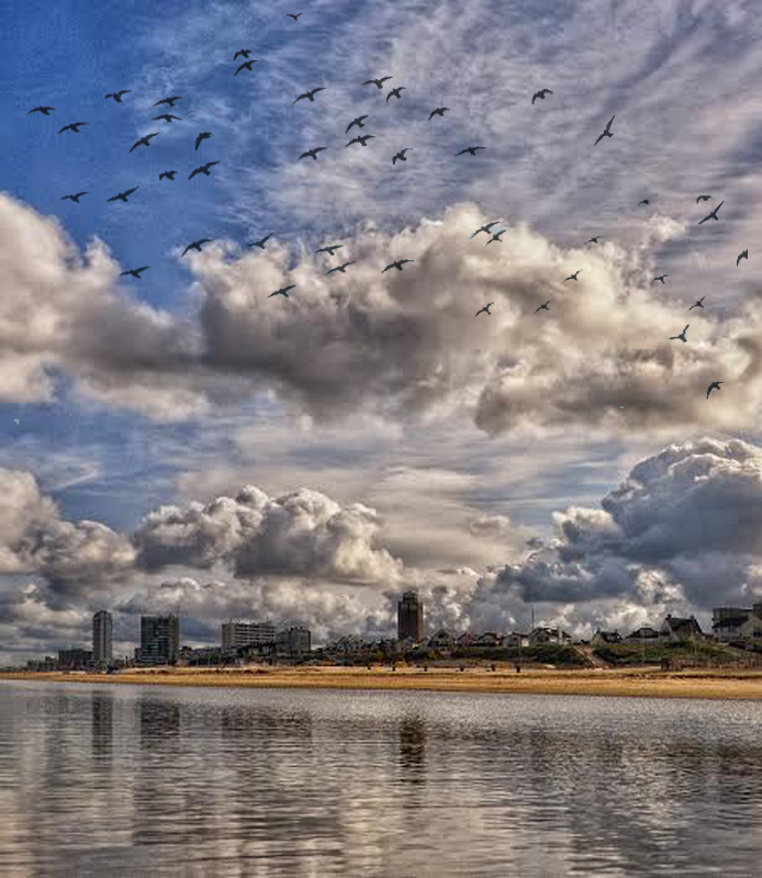 zandvoort_2014_met_duiven
